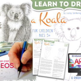 How to Draw a Koala – Instructional Videos