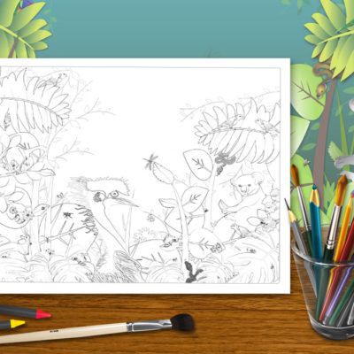 Australian Wildlife Colouring Pages – Spiral Bound Book